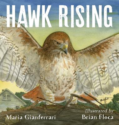 Hawk Rising Cover Image