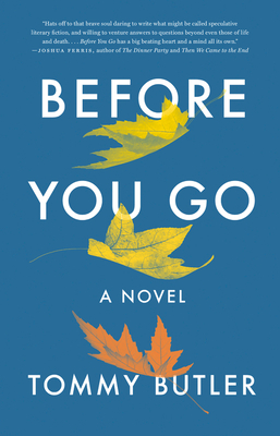 Before You Go: A Novel Cover Image
