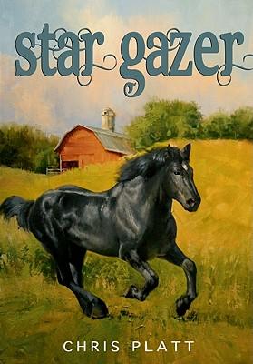 Star Gazer Cover