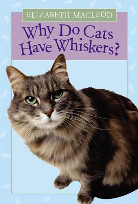 Why Do Cats Have Whiskers? Cover
