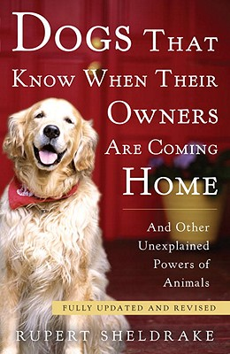 Dogs That Know When Their Owners Are Coming Home Cover