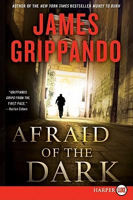 Afraid of the Dark: A Novel of Suspense (Jack Swyteck Novel) Cover Image