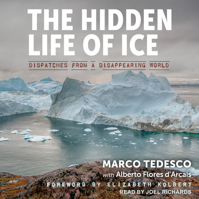 Cover for The Hidden Life of Ice