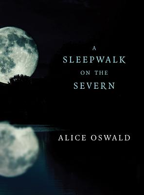 A Sleepwalk on the Severn Cover Image