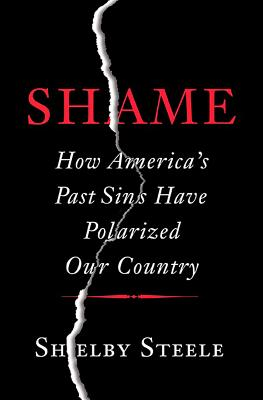 Shame: How America's Past Sins Have Polarized Our Country Cover Image