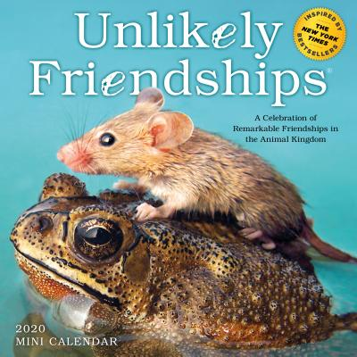 Unlikely Friendships Mini Wall Calendar 2020 Cover Image