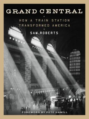 Grand Central: How a Train Station Transformed America Cover Image