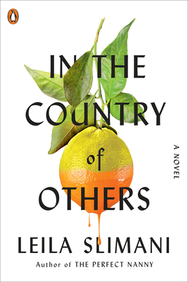 In the Country of Others: A Novel Cover Image