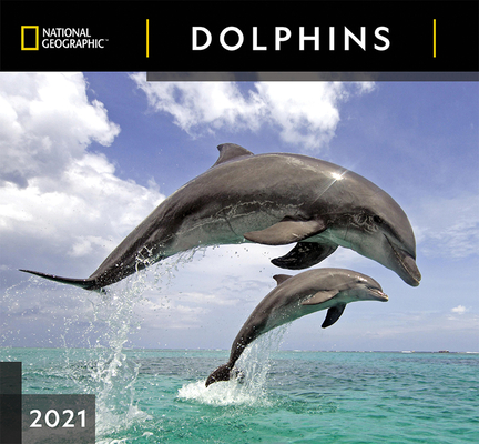 Cal 2021- National Geographic Dolphins Wall Cover Image