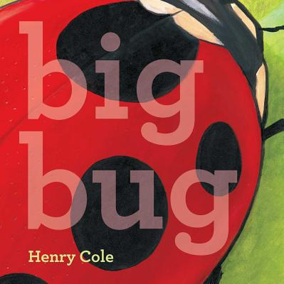 Big Bug Cover