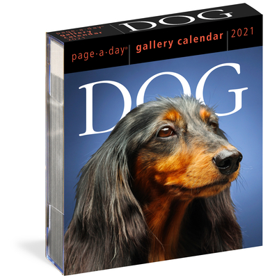 Dog Page-A-Day Gallery Calendar 2021 Cover Image