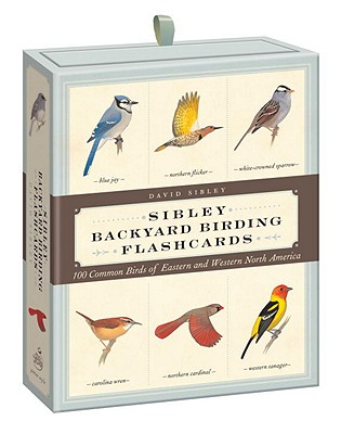 Sibley Backyard Birding Flashcards: 100 Common Birds of Eastern and Western North America (Sibley Birds) Cover Image