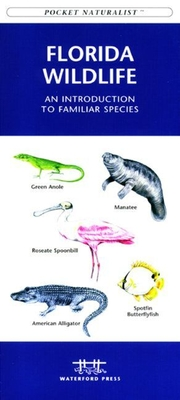 Florida Seashore Life: A Folding Pocket Guide to Familiar Plants and Animals (Pocket Naturalist Guide) Cover Image