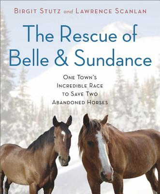 The Rescue of Belle and Sundance: One Town's Incredible Race to Save Two Abandoned Horses (Hardcover) By Birgit Stutz, Lawrence Scanlan