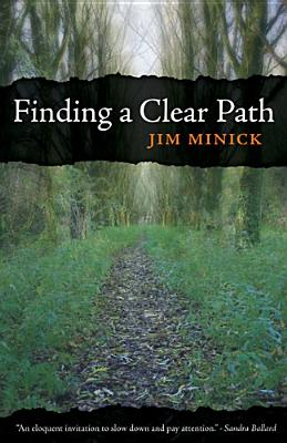 Finding a Clear Path Cover