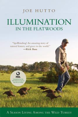 Illumination in the Flatwoods: A Season with the Wild Turkey Cover Image
