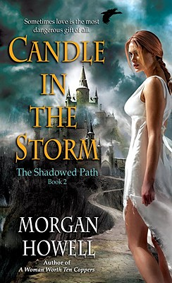 Candle in the Storm Cover