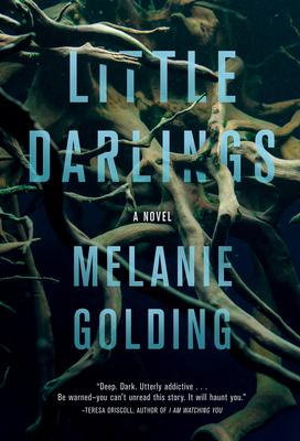 Little Darlings: A Novel Cover Image