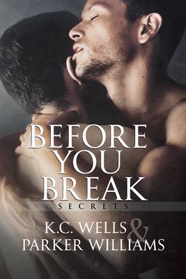 Cover for Before You Break (Secrets #1)