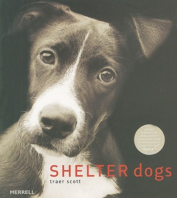 Shelter Dogs Cover Image