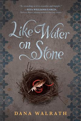 Like Water on Stone Cover Image