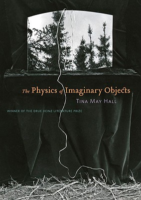 Cover for The Physics of Imaginary Objects (Pitt Drue Heinz Lit Prize)