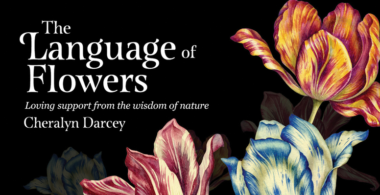 The Language of Flowers: Loving Support from the Wisdom of Nature (Mini Inspiration Cards) Cover Image