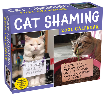 Cat Shaming 2021 Day-to-Day Calendar Cover Image