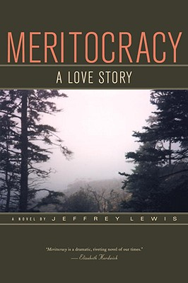 Meritocracy: A Love Story Cover Image