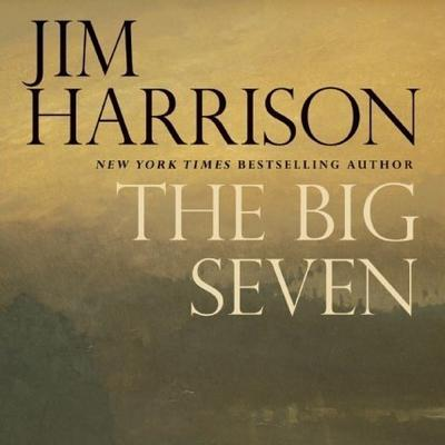 The Big Seven: A Faux Mystery Cover Image
