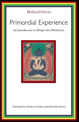 Primordial Experience Cover