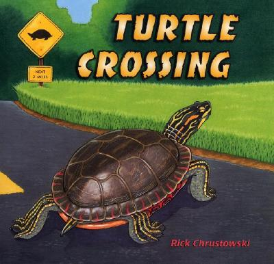 Turtle Crossing Cover