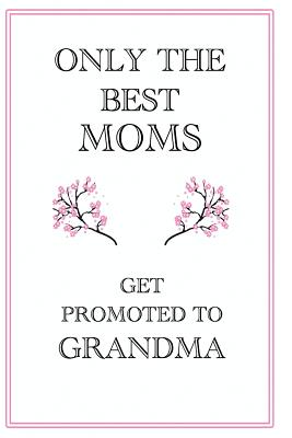 Only The Best Moms Get Promoted to Grandma: Only The Best Moms Get Promoted to Grandma Mothers Day Gift, 110 Page Ruled Notebook, 6x9inch, Novelty Mot Cover Image