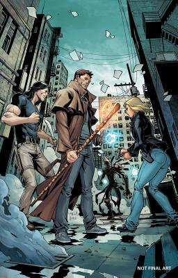 Jim Butcher's Dresden Files: Wild Card cover image