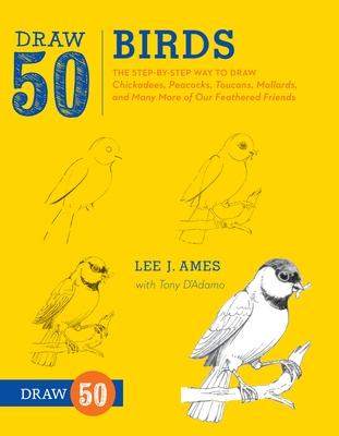 Draw 50 Birds Cover