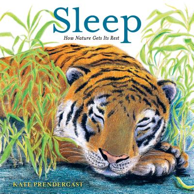 Sleep: How Nature Gets Its Rest Cover Image