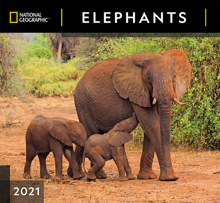 Cal 2021- National Geographic Elephants Wall Cover Image