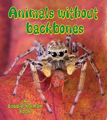 Animals Without Backbones (Big Science Ideas) Cover Image