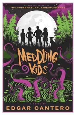 Meddling Kids Cover Image
