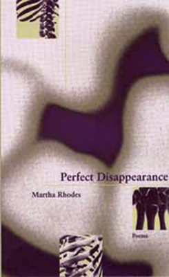 Cover for Perfect Disappearance