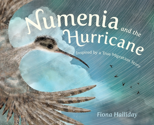 Numenia and the Hurricane: Inspired by a True Migration Story Cover Image