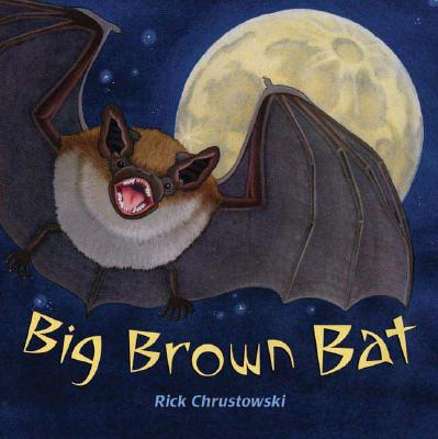 Big Brown Bat Cover