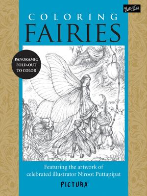 Coloring Fairies Cover