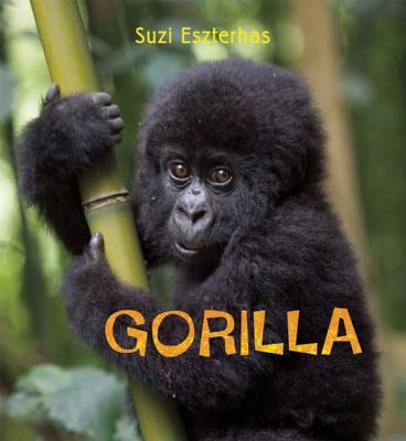 Gorilla Cover