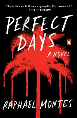 Perfect Days: A Novel Cover Image