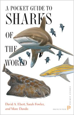 A Pocket Guide to Sharks of the World (Princeton Pocket Guides #12) Cover Image