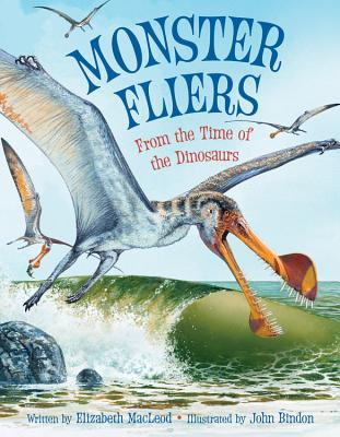 Monster Fliers Cover