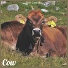 Cow 2021 Calendar: Official Animal Cows Wall Calendar 2021 Cover Image