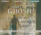In an Antique Land: History in the Guise of a Traveler's Tale Cover Image