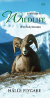 A Field Guide to Wildlife of the Rocky Mountains Cover Image